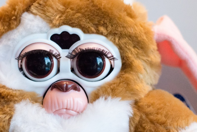 {298/365} Freaky Furbee