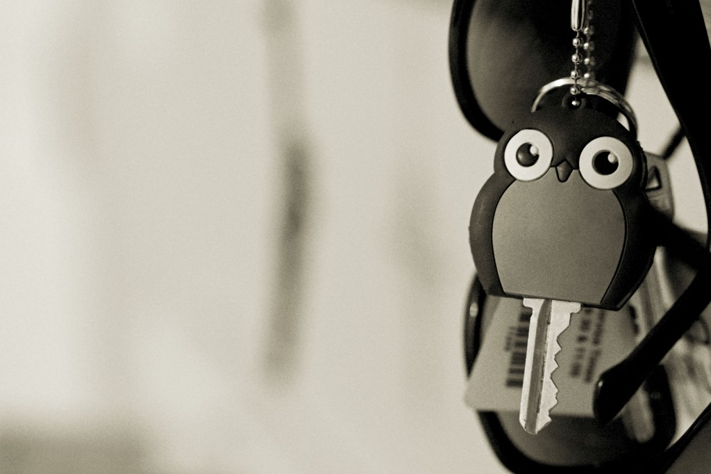 {65/365} My owl key cover